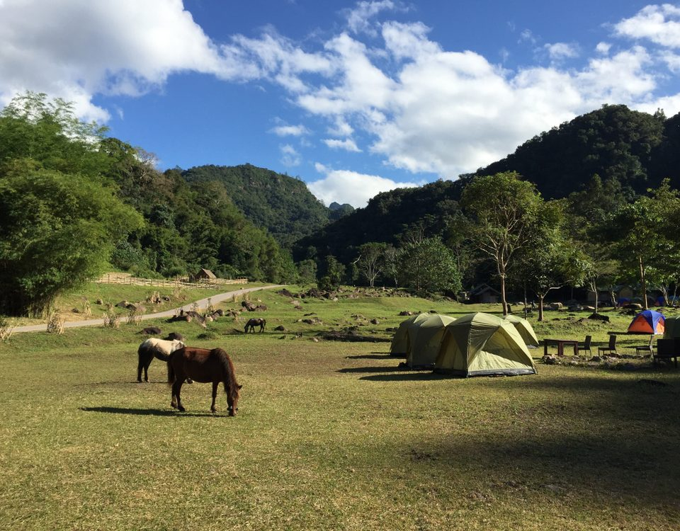 equestrian camping